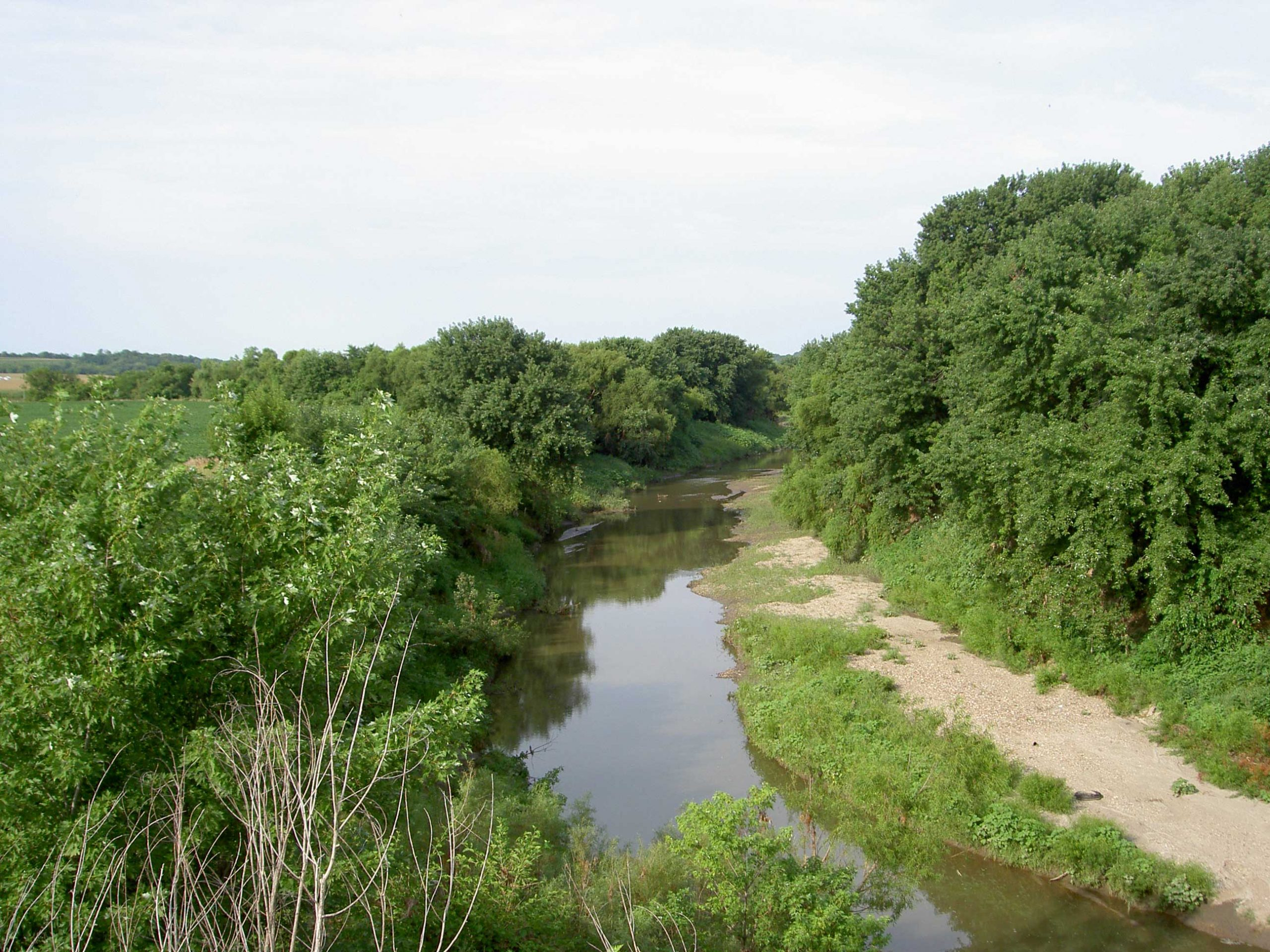 Wolf River looking south